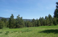 191 Clear Creek Road Cascade ID, 83611