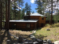 7 Sheep Creek Loop Gibbonsville ID, 83463