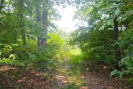 Lot 10 Misty Mountain Drive Bruner MO, 65620