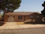 509 Holly Street Levelland TX, 79336