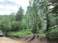 Forest Road Manitou Springs CO, 80829