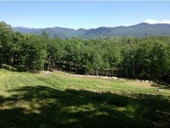 Lot 1.1 Toad Hill Road Sugar Hill NH, 03586