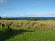27-520 Old Mamalahoa Hwy Lot #: 4 Papaikou HI, 96781