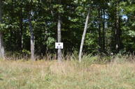 Lot 52 Black Diamond Dr New Castle VA, 24127