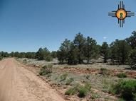 Tbd Back County Byway/County Rd. 42 Grants NM, 87020