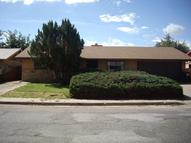 617 Gunnison Avenue Grants NM, 87020