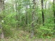 Lot 12 Red Cloud Road Riceville TN, 37370