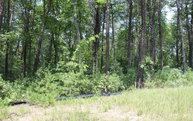 Lt 47 Solitude Lane Lot 47 Blairsville GA, 30512