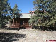 625 Bear Creek Road South Fork CO, 81154