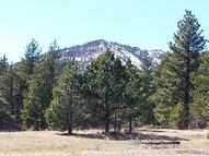 4535 Little Wolf Creek Tracts 62, 1-10 Wolf Creek MT, 59648