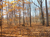 11.8 Acres Vernon Hills Dr. Big Bend WI, 53103
