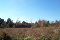 90ac Off Cherry Hill Church Rd. South Boston VA, 24592
