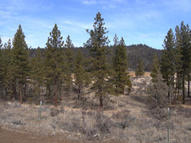 County Rd 91 Lookout CA, 96054