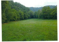 11.00 Brimstone Creek Road Moss TN, 38575