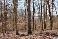 Lot 1113 Cove Lane Parcel 003.00 Baneberry TN, 37890