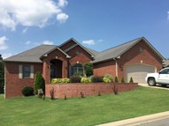 1309 Cottonwood Court Mountain Home AR, 72653