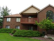 8621 Scenicview Dr Unit: 206 Broadview Heights OH, 44147