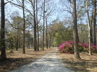 4227 Chisolm Road Johns Island SC, 29455