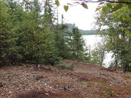 27 Wilderness Trail Hovland MN, 55606