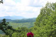 1315 Dream Mountain Road Grassy Creek NC, 28631