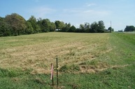 Lot 4 Brownsville Road Brownsville KY, 42210