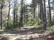 259 Westman Pagosa Springs CO, 81147