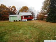 56 Harry Peckham Road Prattsville NY, 12468