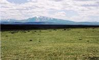 Lot 62 Cassidy River Ranch Medicine Bow WY, 82329