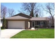 6623 Forest Glen Ave Solon OH, 44139