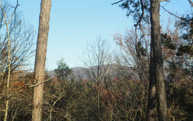 Lot 3 Kontoes Ridge Lot 1 Ellijay GA, 30540