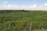 5185 Smith Rd Von Ormy TX, 78073