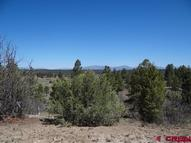113 Conifer Pagosa Springs CO, 81147