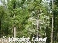 Lot 20 Valley H Road Off Highway 89 North Mayflower AR, 72106