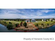 Lot 4 Lugustrum Dr 13 Hernando Beach FL, 34607