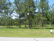 Lot 31 Mountain View Way Bainbridge GA, 39819