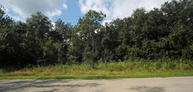Us Highway 1 - Scottsmoor Mims FL, 32754