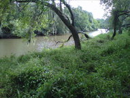 Lot 30 River Hollow Way Blessing TX, 77419
