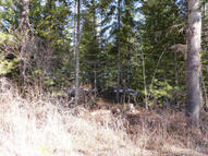 Nna Marvin Estates Blk3 Lot1 Priest Lake ID, 83856