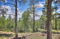 1676 Canyon View Loop Williams AZ, 86046