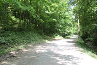 Pine Lick Rd Red Boiling Springs TN, 37150