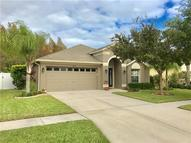 3423 Chessington Drive Land O Lakes FL, 34638