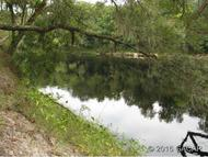 Northeast Trestle Road Mayo FL, 32066