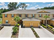13824 River Fish Court Tampa FL, 33637