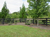 300 Caney View Drive Harriman TN, 37748