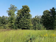 0 Overlook Ridge, Lot 22 Big Sandy TN, 38221