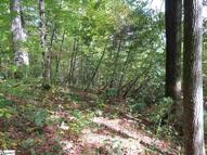 145 Indian Pipe Trail Section # 3 Lot # 145 Landrum SC, 29356