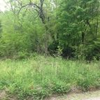43 Acres Spring Creek Rd Reliance TN, 37369