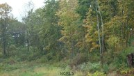 0 Peaceful Valley Rd. & Back To Sodom Rd Johnsburg NY, 12843