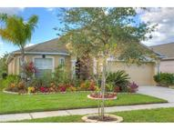 7507 Tower Bridge Drive Zephyrhills FL, 33545