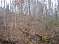 Lot 17 Spring Road Huntington WV, 25705